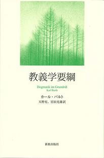 教義学要綱 【ハンディ版】:表紙